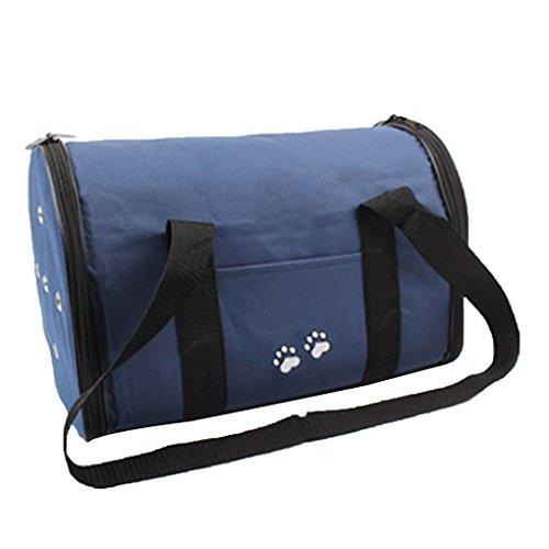 Wasserdicht Einfach tragen Außen Cat Taschen tragbare Reise Pet Carrier Box Hund Meerschweinchen Umhängetasche mit Breathable Loch Arichtop