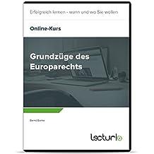 Online-Videokurs Grundzüge des Europarechts von Bernd Banke