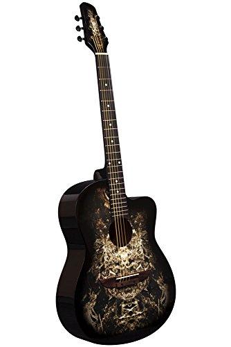 lindo-933c-alien-black-acoustic-guitar-gigbag