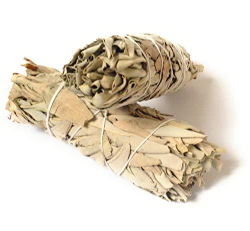 2Stück Californian weiß Salbei klein Smudge Sticks 10,2cm-4,5