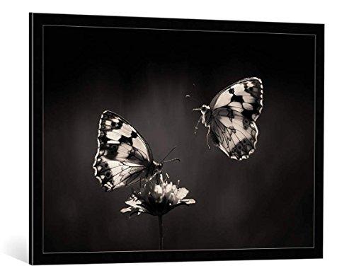 """Quadro con cornice: Jimmy Hoffman """"Medioluto norteña"""" - stampa artistica decorativa, cornice di alta qualità, 100x70 cm, nero / angolo grigio"""