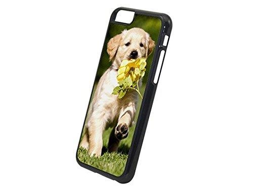 Handyhülle für Apple iPhone-Serie mit eigenem Foto * Cover Case Schutzhülle, Hardcase Apple:Apple iPhone 6 / 6S, Hardcase Farben:Transparent Weiß
