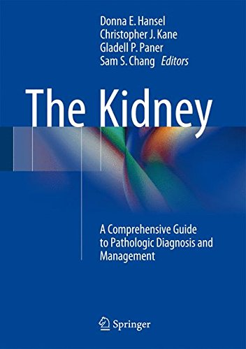 the-kidney-a-comprehensive-guide-to-pathologic-diagnosis-and-management