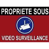 """Panneau de dissuasion """"propriété sous vidéo surveillance"""" 150x100mm"""