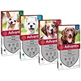 Bayer Advantix per Cani da 40 a 60 kg 4 Pipette