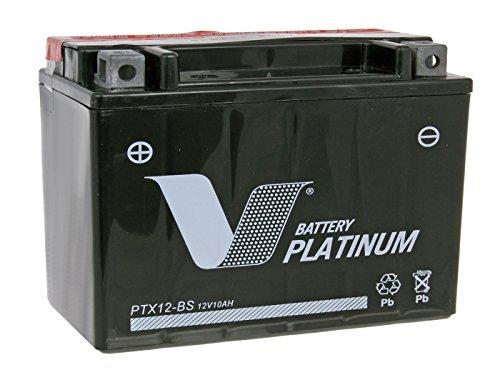Batería V Platinum-vp31260-ptx12de BS MF sin mantenimiento