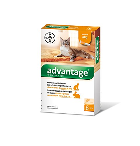 bayer-advantage-40-chat-lapin-0-4-kg-6-pipettes-antiparasitaires