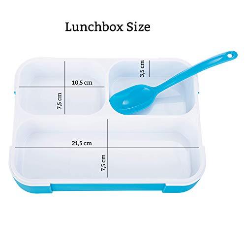 FITPREP Original Lunchbox I Meal Prep I Bento Box I 3 Fächer I Auslaufsicher - Jede Kammer untereinander I Spülmaschinengeeignet (Ohne Deckel) BPA Frei I Brotdose Kinder Frischhaltedose - 3