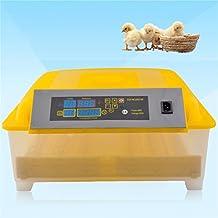 Incubadora de huevos automática 48 Máquina de incubación de huevos Equipo de incubación portátil en la familia, la granja y la escuela