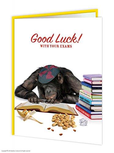 Viel Glück mit Ihrem Prüfungen Grußkarte (Glück Viel Candy)