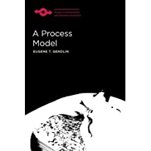 PROCESS MODEL (Studies in Phenomenology and Existential Philosophy (Paperba)