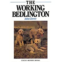 [The Working Bedlington] (By: John Robert Glover) [published: March, 1999]
