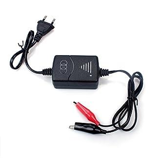 Cargador Inteligente para batería de Plomo de 12V (SLA), con protección contra sobrecarga de Cortocircuito, Carga Constante de Tres etapas de tensión Constante y chorreo