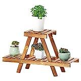 Pflanzenregale Holz Pflanzenständer für Hausgarten Balkon Blumen Display Regal Leiter Rack 2-Tier, braun Blumenständer