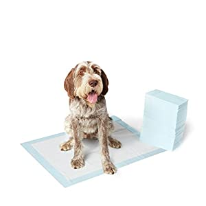 AmazonBasics Pet Training and Puppy Pads, Regular – 50-Count