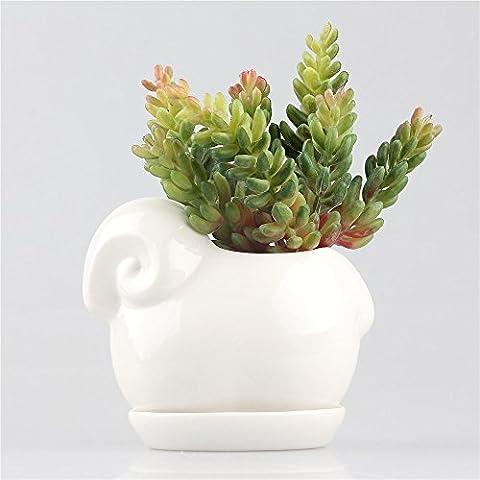 Kawaii ovejas de cerámica macetas suculentas maceta maceta macetas de jardín moderno estilo sencillo con bandeja de porcelana, color blanco
