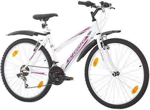 Multibrand, PROBIKE 26 Zoll, Mountainbike (Rosa+Kotflügel)