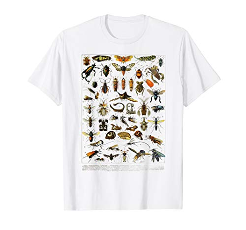 Bugs Insect Collection Bug Lover Designs science entomology T-Shirt - Bug Gelben T-shirt
