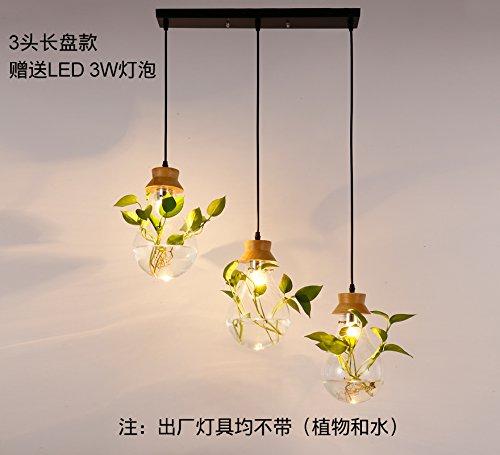 restaurant-creatif-chinois-moderne-verre-chevet-lustre-lustre-jardin-propre-des-plantes-aquatiques-t