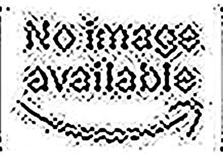 256 MB (1 x 256 MB) PC2700 ECC ungepuffert 18