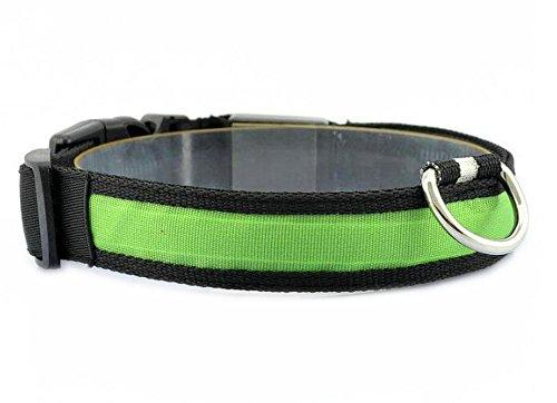 LED Halsband Leuchthalsband S/M/L/XL Hundehalsband Sicherheitshalsband Nylon Da.Wa