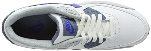 Nike Air Max 90 Leather, Running Entrainement Homme - Blanc (Summit White/Lyon Blue/Gry Mst), 40.5 EU Blanc (Summit White/Lyon Blue/Gry Mst)