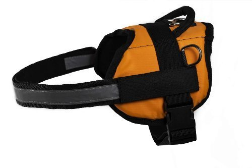 Dean & Tyler DT Works Assistance Dog Dog Harness, Fits Girth Size 21-Inch to 26-Inch, X-Small, Orange/Black 3