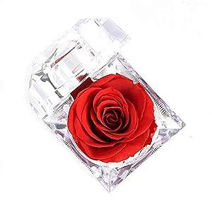 Luoistu Flor Rosa preservada a