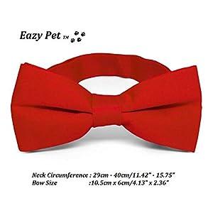 Dog Bow Nœud Papillon Rouge pour Chien