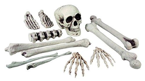 Skelett Knochen Knochenteile Totenkopf 12 Teile groß Halloween (Skelett Teile)