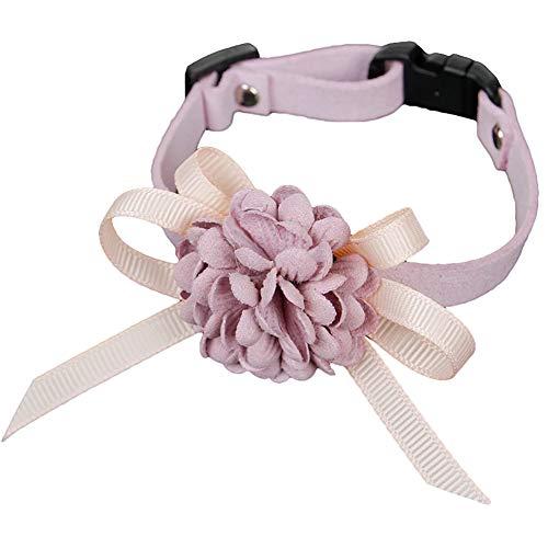 HuhuswwBin Hundehalsband, modisch, SAMT, Blume, Schleife, verstellbar, Halsband für Katzen -