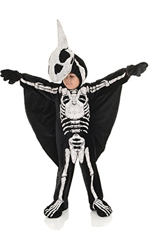 Underwraps Pterodactyl Fossil Toddler Childs Halloween Costume-S Small (Pterodactyl Kostüm Kind)