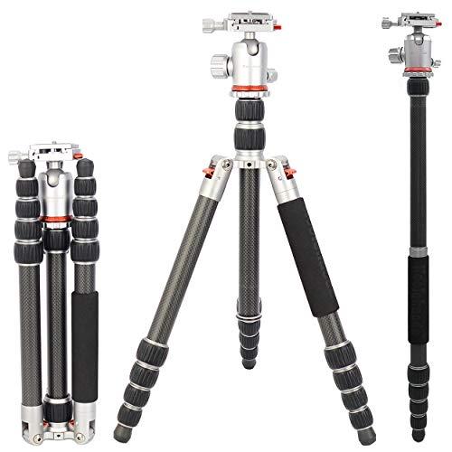 Koolehaoda Kamerastativ Einbeinstativ, Tragbare Carbon-Faser-Stativ Einbeinstativ Kit und Kugelkopf Compact Travel(TK-2535C) -