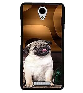 PRINTVISA Dog Pug Case Cover for Xiaomi Redmi Note 2::Xiaomi Redmi Note 2 (2nd Gen)