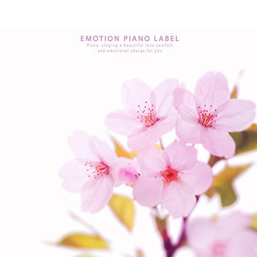 Under the cherry blossom sky