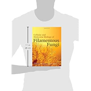 Cellular and Molecular Biology of Filamentous Fungi
