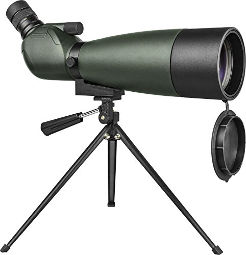 Telescopio terrestre con zoom Orion GrandView 20-60x80 mm