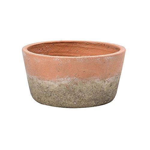 Burgon & Ball - Vaso basso per piante, in terracotta invecchiata