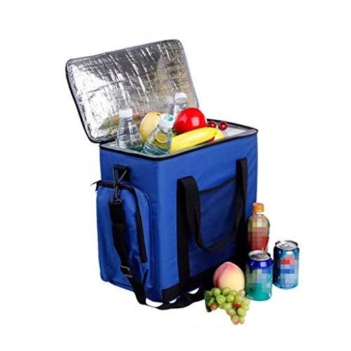 Bingx Elektrische Kühlbox Auto Kühlschränke Tragbare Gefrierschrank Paket Tasche 600D Oxford Tuch Auto und Heimgebrauch Heizung und Kühlung 14L 12 V 220 V (Gefrierschrank Tuch)