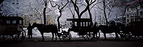 Panoramic Images – Horse Drawn Carriages Chicago Illinois Photo Print (92.30 x 30.48 cm)