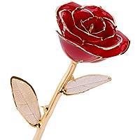 Rosa Real Bañada en Oro 24k, Hecho a Mano con Láminas de Oro y Rosa Real, Regalo Ideal Para el Día ee San Valentín Día de la Madre Navidad Cumpleaños y Boda, Amor Eterno con Caja de Regalo y Soporte (rosa)