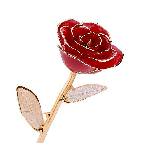Rosa Real Bañada en Oro 24k, Hecho a Mano con Láminas de Oro y Rosa