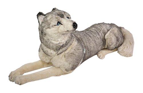 Piutrè 2212 - Plüsch Sibirischer Husky liegend, 85 cm (Katze Spielzeug Cricket)