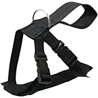 JWBOSS Set Shaper Body Shaper Nouveau N/éopr/ène Chaud Slimming Xtreme Waist Slim Belt Black Yoga Trainer Gym Workout Four