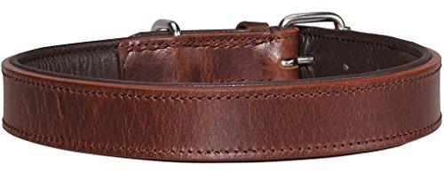 Knuffelwuff Weiches Lederhalsband Hund Hundehalsband Basic Plus Braun L 36-45 cm - 2