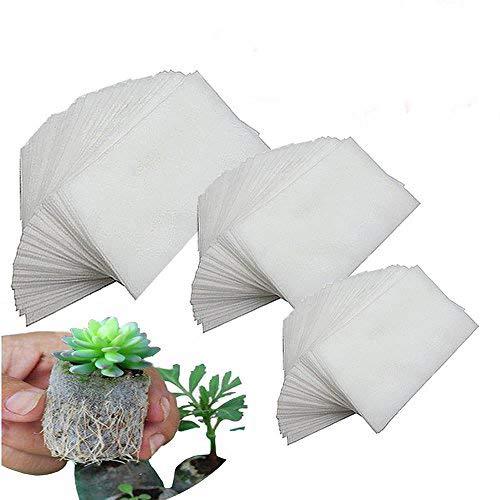 Usine biodégradable Grow Sacs 250 Pcs Non-tissé Pépinière Sacs Tissu Pots de semis Nursing Raising Sacs en croissance Pots Plantes Pouch Maison Jardin Approvisionnement 3 Taille Différente
