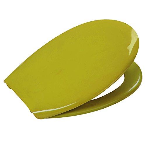 WC-Sitz aus Thermoplast in moosgrün