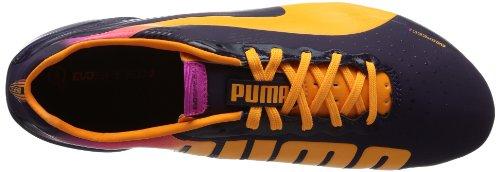 Puma  evoSPEED 2.2 FG, Chaussures de foot pour homme bleu Violett (blackberry cordial-fluo orange-fluo pink 02)