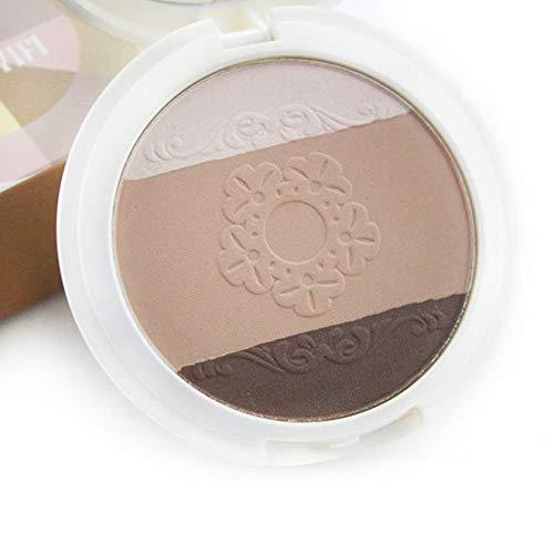 Amuster_Fond de Teint Maquillage Liquide Correcteur Concealer Contour Palette Fond de Teint Cosmétique Anti-cernes Mettez en Surbrillance Camouflage Palette Correcteur + Pinceau