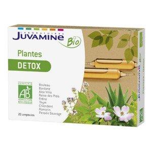 Ampoules Plantes Detox Bio